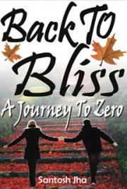 Back To Bliss: A Journey To Zero